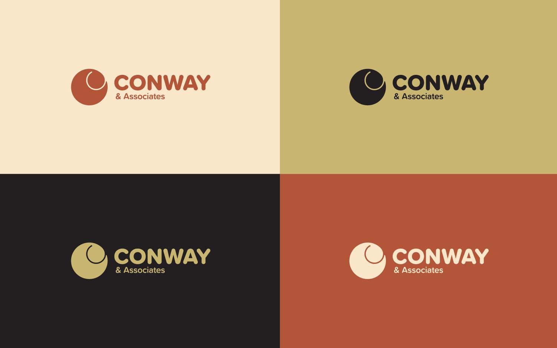 Logo design for risk management firm in multiple color variations